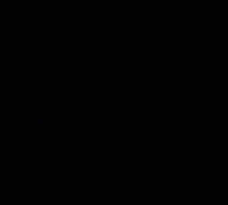 logo schwarz klein
